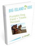 Pumpkin Dog Food + Treats Recipes